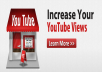 deliver 3000-4000+ Youtube Video Views