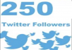 add 250 real Twitter Followers