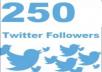 add 250 real Twitter Followers