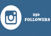 add 250 real Instagram Followers