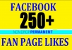provdie 250 fan page likes