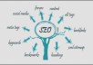 do On page and Off page SEO