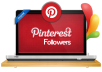 add you real 100 Pinterest followers within very short time