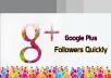 I will give 100 USA Google Plus Followers