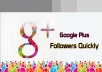 I will give 100 USA Google Plus Followers
