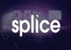 Give you 50 Real USA Splice likes