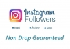 give you 500+ Non Drop Guaranteed Instagram Followers