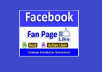 Provide Real High Quality 100+ non drop Facebook Fanpage Likes