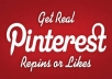 Provide 500 Pinterest RePins
