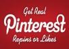 Provide 500 Pinterest RePins