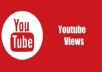 give 300 youtube views