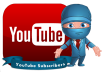 deliver 1000 real human Drip Feed youtube views + 20 Likes + 10 Subscribers